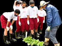 農業体験のイメージ-03
