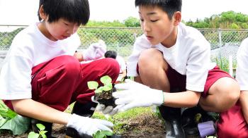 農業体験(城山キャンパス)へのリンク